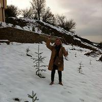 Noula Petridoy