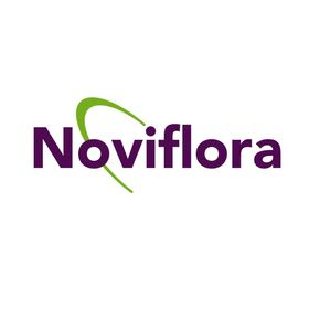 Noviflora