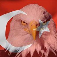 Kemal Erkal
