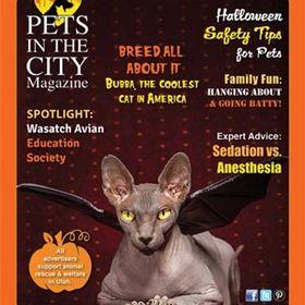PetintheCityMagazine