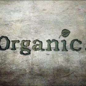 Organic Vegan Earth