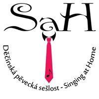 Sah Děčín