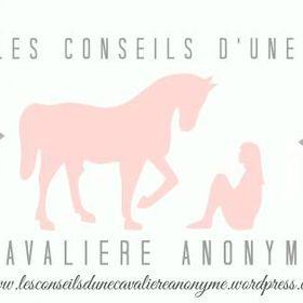 Les Conseils d'une Cavalière Anonyme
