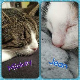 Conny Mickey-Jean