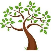 Fred Stevens Tree Company