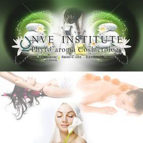 NVE Institute