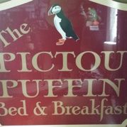 The Pictou Puffin
