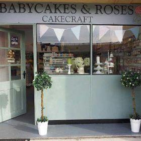 Babycakes & Roses Cakecraft Carol Bass