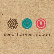 Seed Harvest Spoon