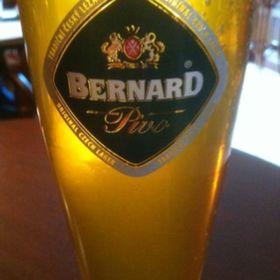 Bern67 UK