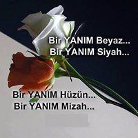 Ayşe Elvan
