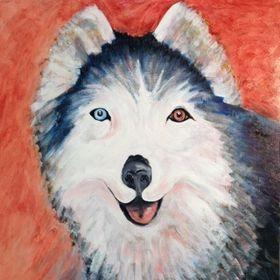 Taysia Blue Siberian Husky Rescue