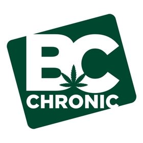BC Chronic (bcchronicinc) on Pinterest