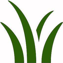 Herbolario Allium
