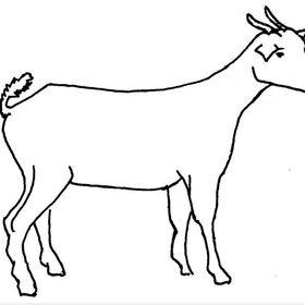 Goatt