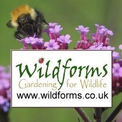 Wildforms