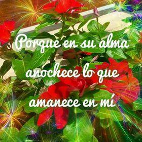 Angee Otero