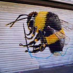 A Bee 🐝 Dee