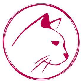 Katzensprache   Der Katzenblog für Katzenliebhaber