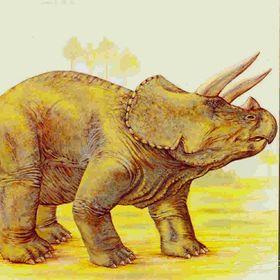 triceratopss ros