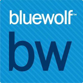 Bluewolf Likes