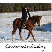 Love Horseback Riding