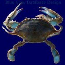 Blue Claw Database Design