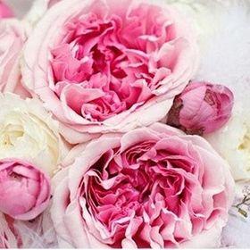 Květiny na přání