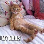 Jeanine Nails