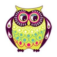 Silly Owl Boutique