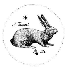 Sophie Truant . ST-illustration