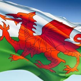 Welsh Biz