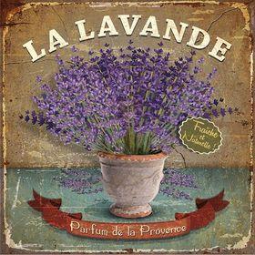Levander