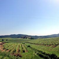 Tuscany Bedandbreakfast