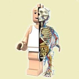 LegoManCreations .