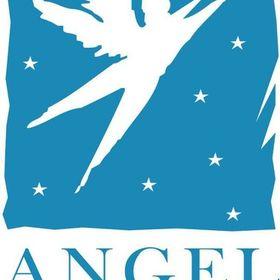 Angel Group