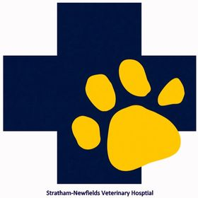 Stratham-Newfields Veterinary Hospital (Dogs and Cats)