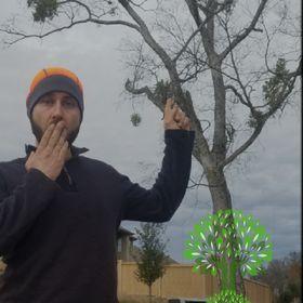 US Tree Care