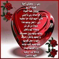 Samah Alhayek Elbodon