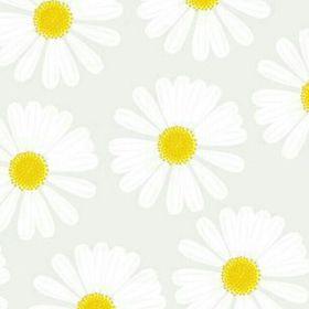 Róża Kołodziejska