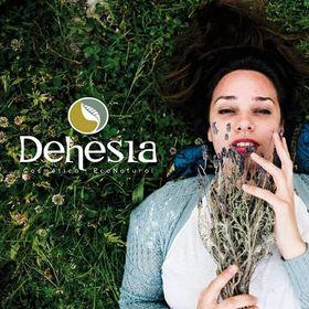 Dehesia Econatural