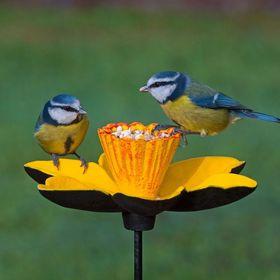 Gardman Wild Bird Care