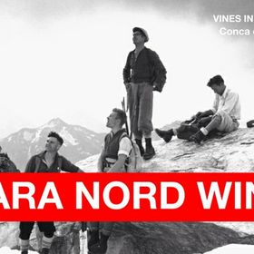 CARA NORD wine Cellar