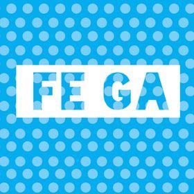 Fe Ga