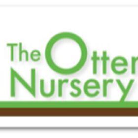 1f3267a201 The Otter Nursery (theotternursery) on Pinterest