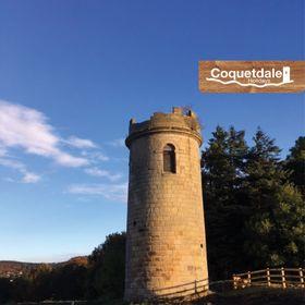 Coquetdalehols