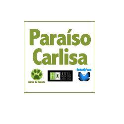 Paraíso Carlisa