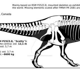 big theropods