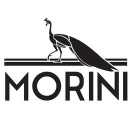 MORINI BAGS