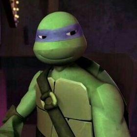 Tmnt Donatello Hamato
